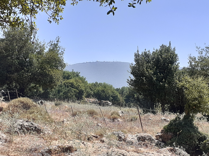 Read more about the article Day 4, Shvil Yisrael: Dishon to Tzivon Junction (15.5 km)