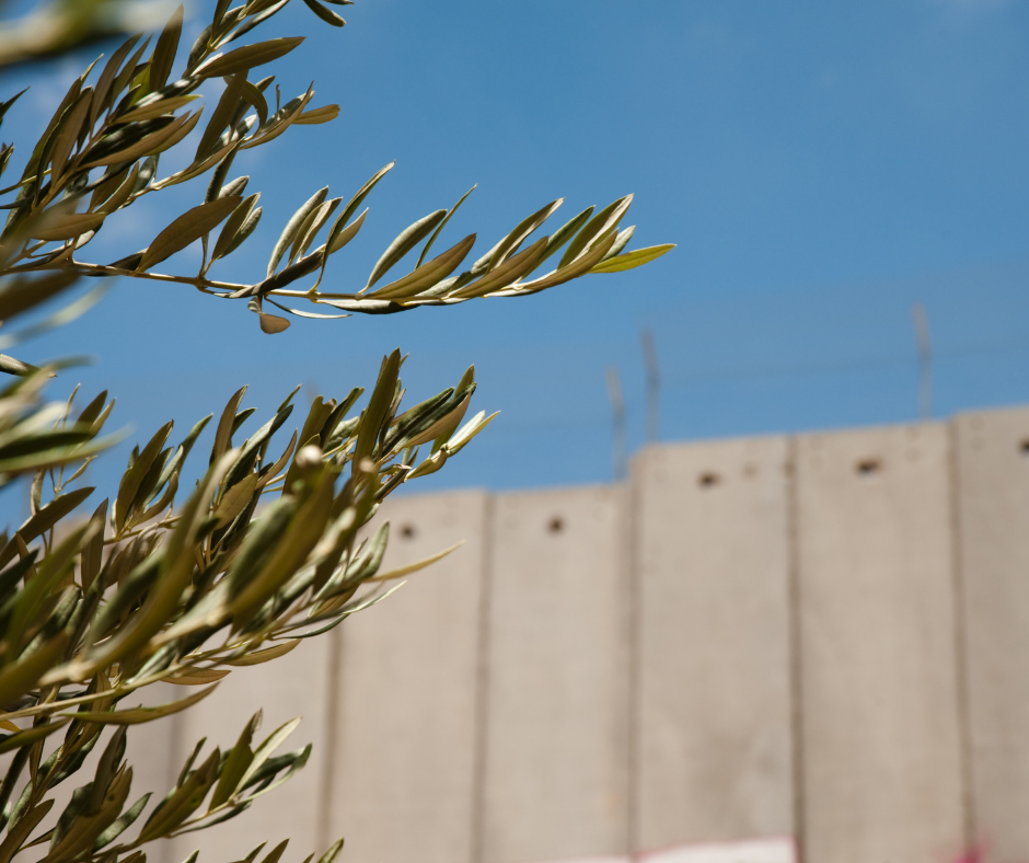 Engaging with the Israeli-Palestinian Conflict: Online Program for Jewish Educators