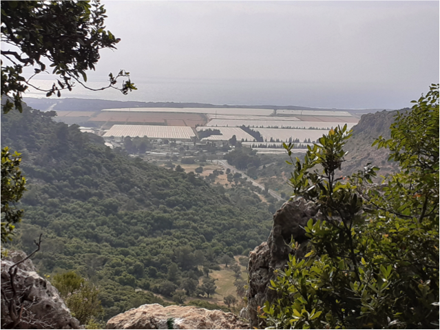 Read more about the article Day 13, Shvil Yisrael: Kibbutz Yagur to Oren Junction (19 km)